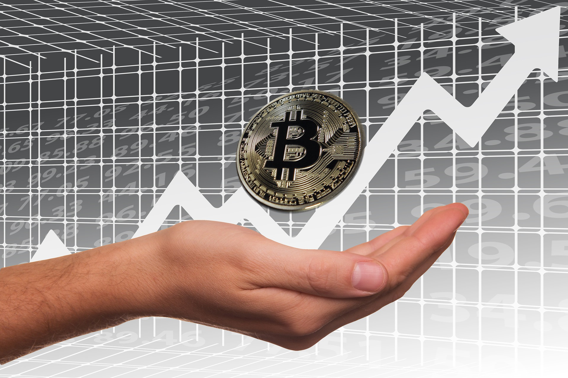 Invest in bitcoin. Investing in Cryptocurrency